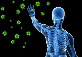 Мед – помощник при намален имунитет