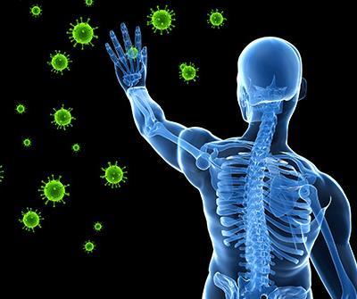 Мед – помощник при намален имунитет, анемии и сърдечно-съдови проблеми