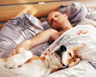Какво трябва да знаем за сънищата и как да се справим с безсънието